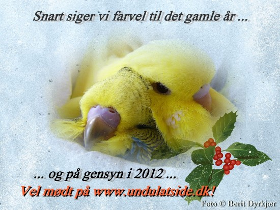 articles: godt_nytaar_2012_c.jpg