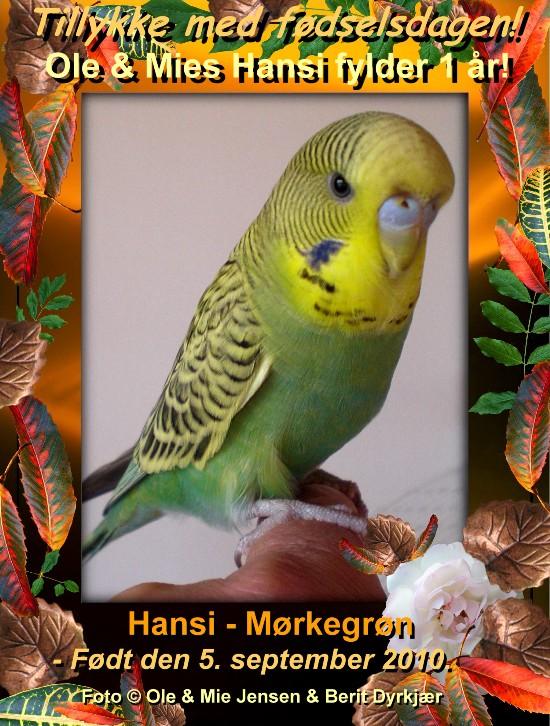 news: hansi1aar2011.jpg