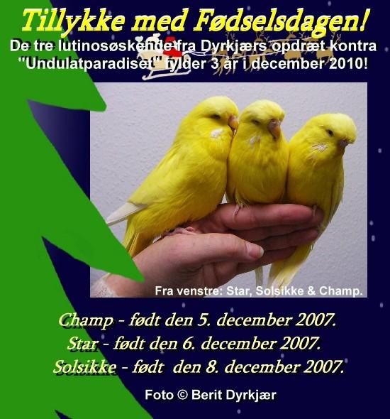 news: lutinoerne_3_aar_2010_bd.JPG
