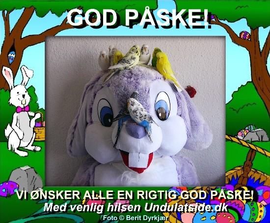 news: paasken_2011.JPG