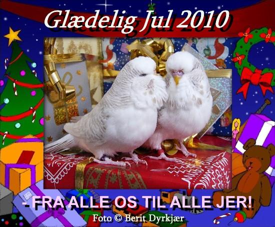 news: undulaternes_jul_2010.JPG
